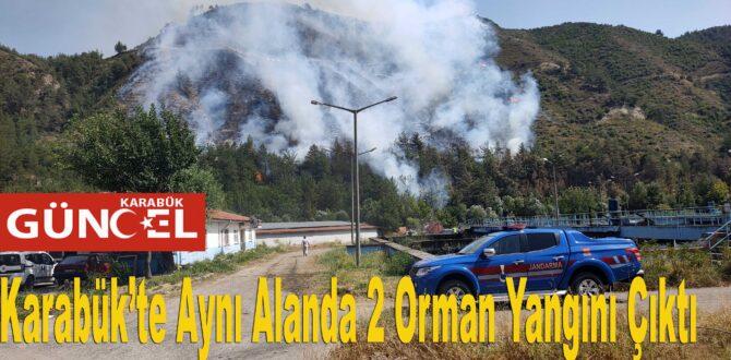 Karabük'te Aynı Alanda 2 Orman Yangını Çıktı