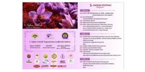SAFRANBOLU 5. SAFRAN FESTİVALİ'NE HAZIR