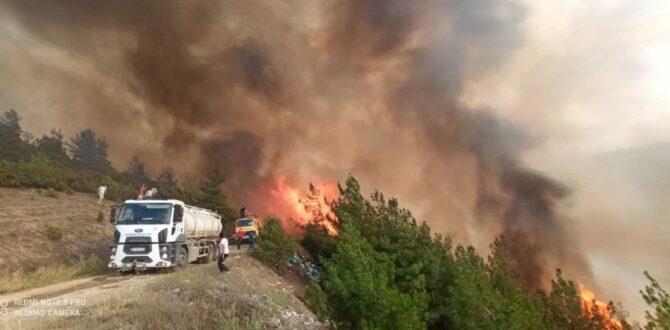Karabük'te Yangın Rüzgarın Etkisiyle Büyüyor