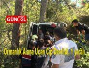 Ormanlık Alana Uçan Cip Devrildi, 1 yaralı
