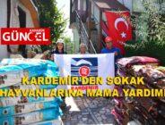 KARDEMİR'DEN SOKAK HAYVANLARINA MAMA YARDIMI